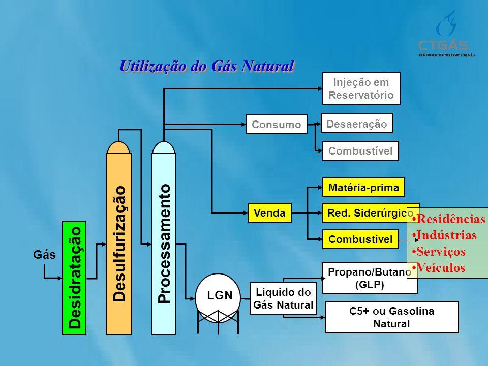 Utilização do Gás Natural Gás Desidratação Desulfurização Processamento LGN Líquido do Gás Natural Propano/Butano (GLP) C5+ ou Gasolina Natural Injeçã