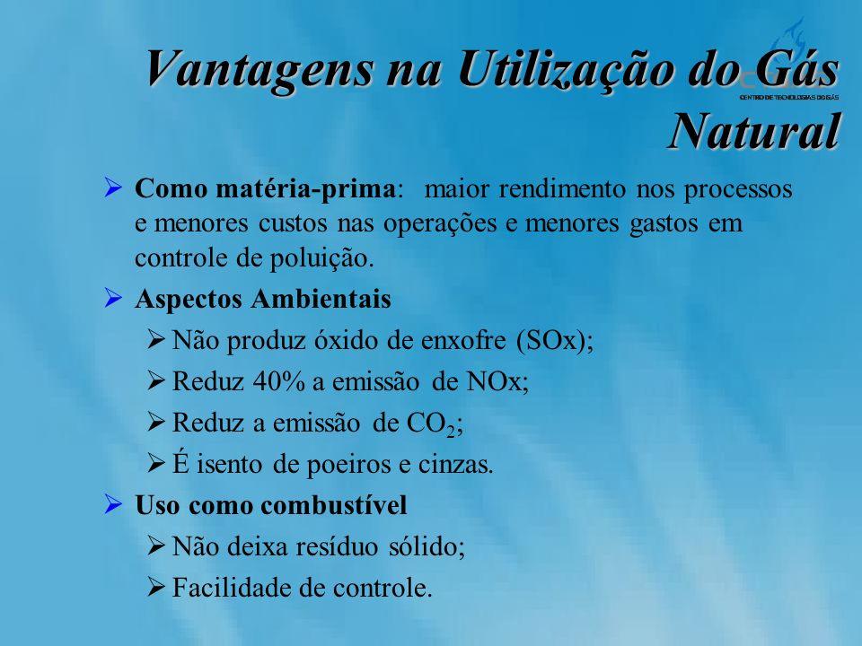 Vantagens na Utilização do Gás Natural Como matéria-prima: maior rendimento nos processos e menores custos nas operações e menores gastos em controle