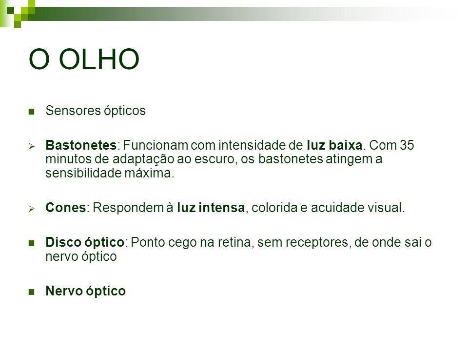 O OLHO Sensores ópticos Bastonetes: Funcionam com intensidade de luz baixa. Com 35 minutos de adaptação ao escuro, os bastonetes atingem a sensibilida
