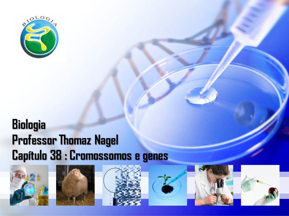 Biologia Professor Thomaz Nagel Capítulo 38 : Cromossomos e genes