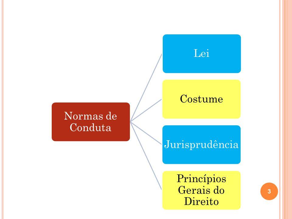 Normas de Conduta LeiCostumeJurisprudência Princípios Gerais do Direito 3