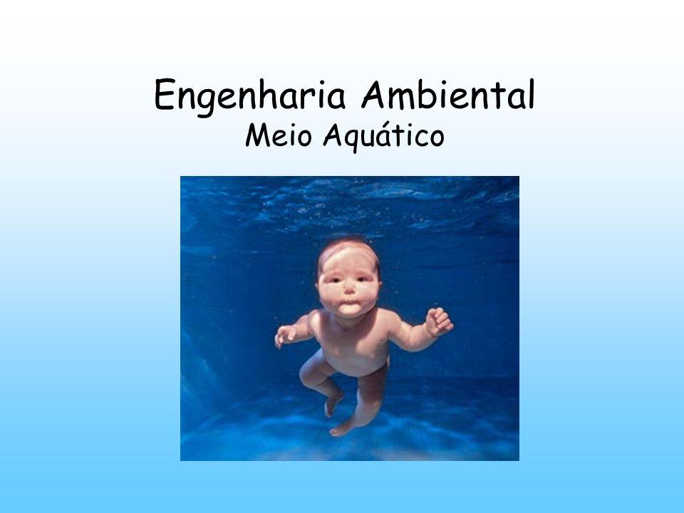 Engenharia Ambiental Meio Aquático
