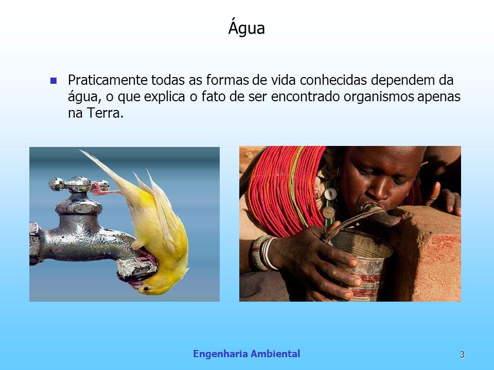 Engenharia Ambiental 3 Água Praticamente todas as formas de vida conhecidas dependem da água, o que explica o fato de ser encontrado organismos apenas