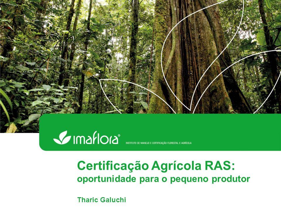 Certificação Agrícola RAS: oportunidade para o pequeno produtor Tharic Galuchi