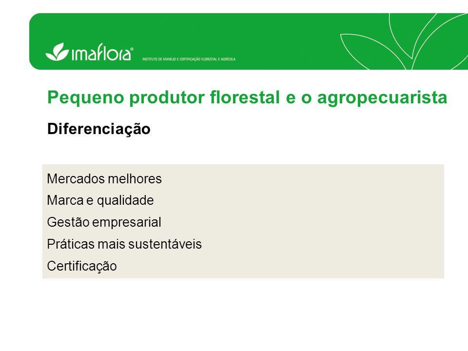 Mercados melhores Marca e qualidade Gestão empresarial Práticas mais sustentáveis Certificação Pequeno produtor florestal e o agropecuarista Diferenci