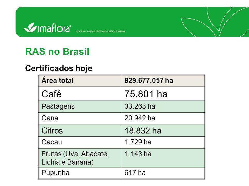 RAS no Brasil Certificados hoje Área total829.677.057 ha Café75.801 ha Pastagens33.263 ha Cana20.942 ha Citros18.832 ha Cacau1.729 ha Frutas (Uva, Aba