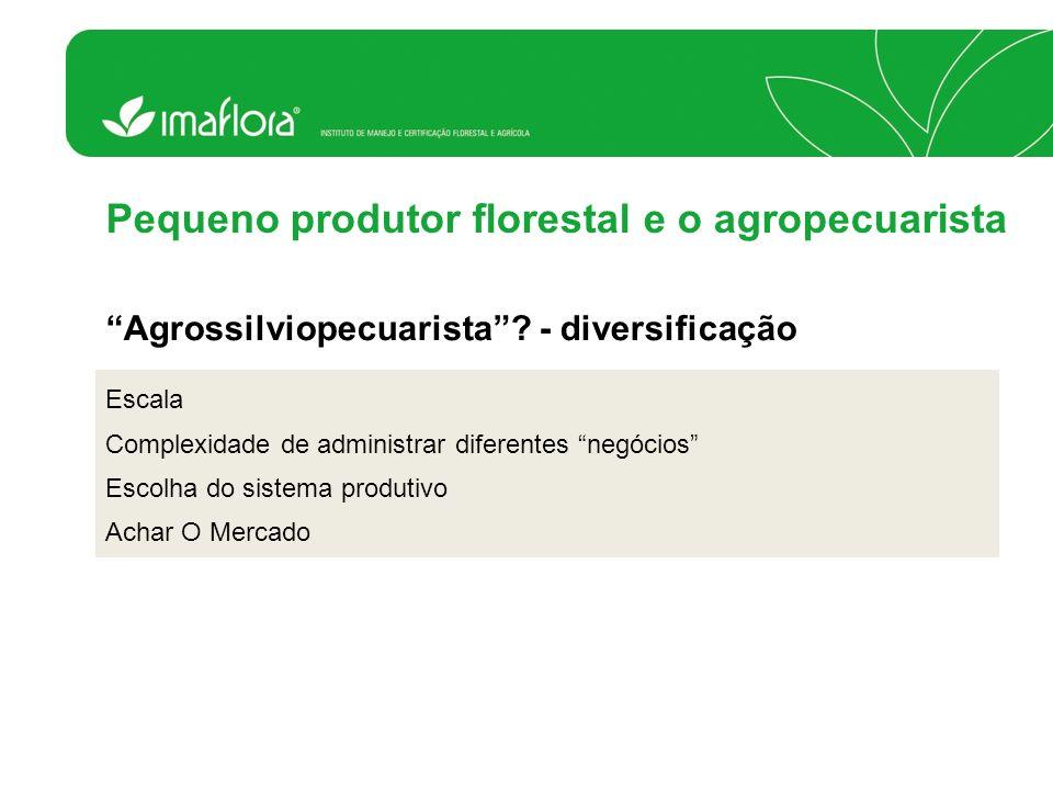Escala Complexidade de administrar diferentes negócios Escolha do sistema produtivo Achar O Mercado Pequeno produtor florestal e o agropecuarista Agro