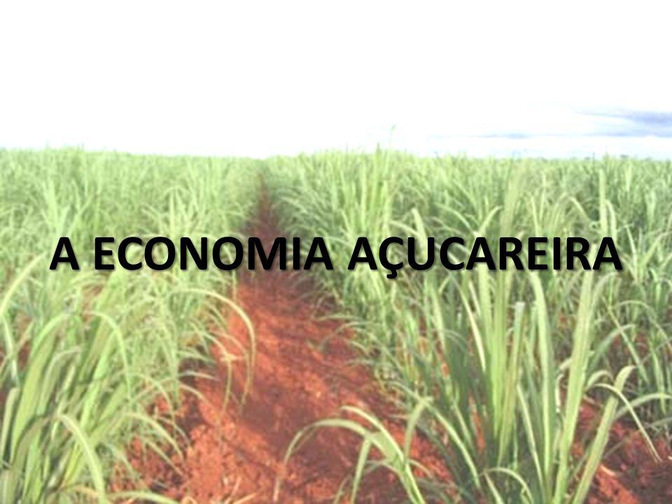 Na América portuguesa foi implementado a colonização de exploração (enriquecimento da metrópole por meio do cultivo de produtos destinados a exportação).