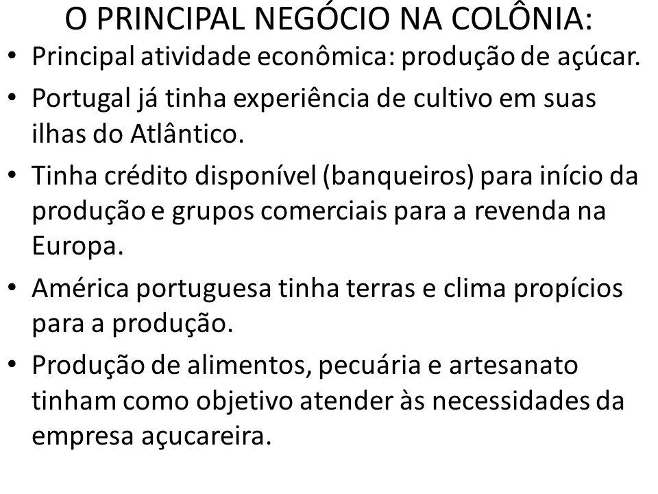 O PRINCIPAL NEGÓCIO NA COLÔNIA: Principal atividade econômica: produção de açúcar. Portugal já tinha experiência de cultivo em suas ilhas do Atlântico