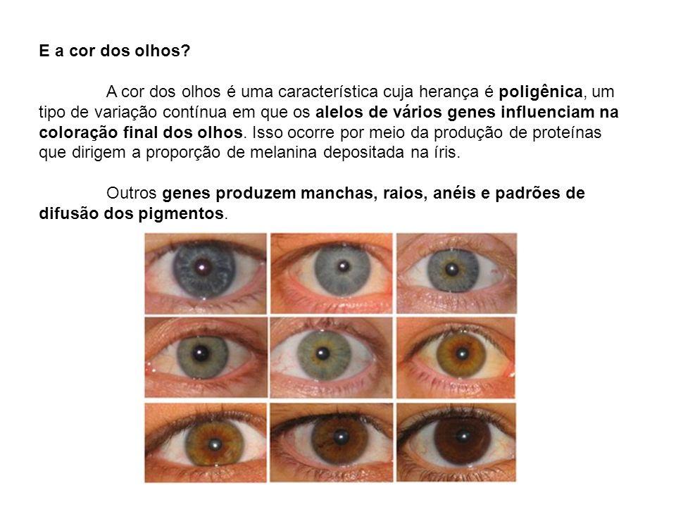 E a cor dos olhos? A cor dos olhos é uma característica cuja herança é poligênica, um tipo de variação contínua em que os alelos de vários genes influ