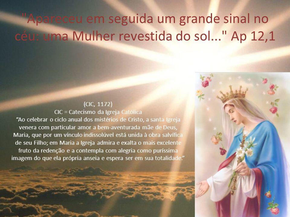 A origem do Rosário (CIC, 2678) (CIC, 1172) (CIC, 971) Segundo a Sagrada Tradição da Igreja, em meados do ano 800, surgiu o costume de recitar 150 Pai-Nossos (texto bíblico, Mt 6, 9- 13).