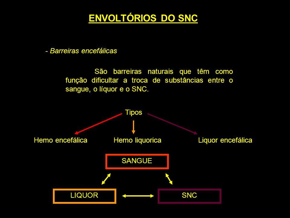 ENVOLTÓRIOS DO SNC - Barreiras encefálicas São barreiras naturais que têm como função dificultar a troca de substâncias entre o sangue, o líquor e o S