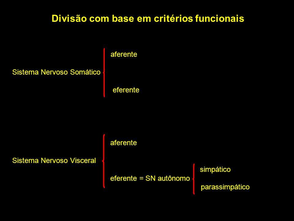 Divisão com base em critérios funcionais aferente Sistema Nervoso Somático eferente aferente Sistema Nervoso Visceral simpático eferente = SN autônomo