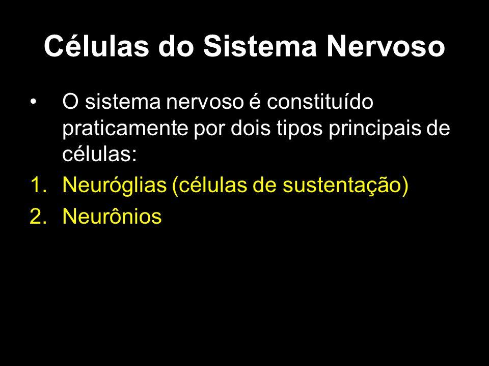 Células do Sistema Nervoso O sistema nervoso é constituído praticamente por dois tipos principais de células: 1.Neuróglias (células de sustentação) 2.