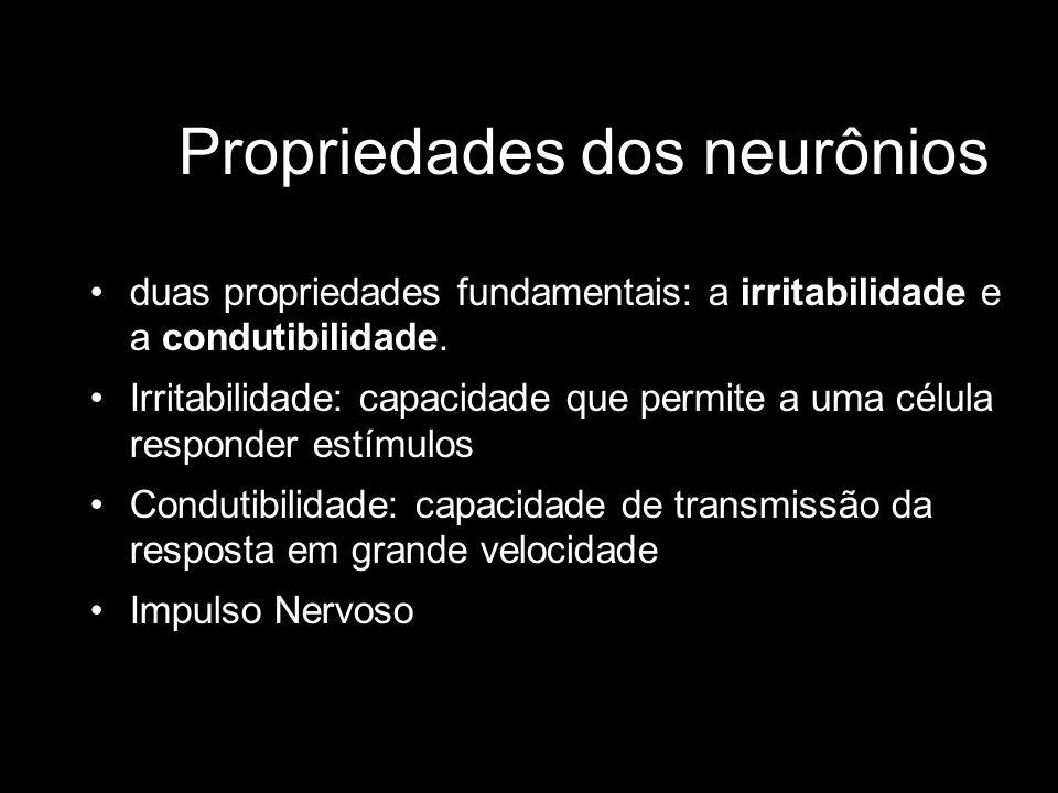 Propriedades dos neurônios duas propriedades fundamentais: a irritabilidade e a condutibilidade. Irritabilidade: capacidade que permite a uma célula r