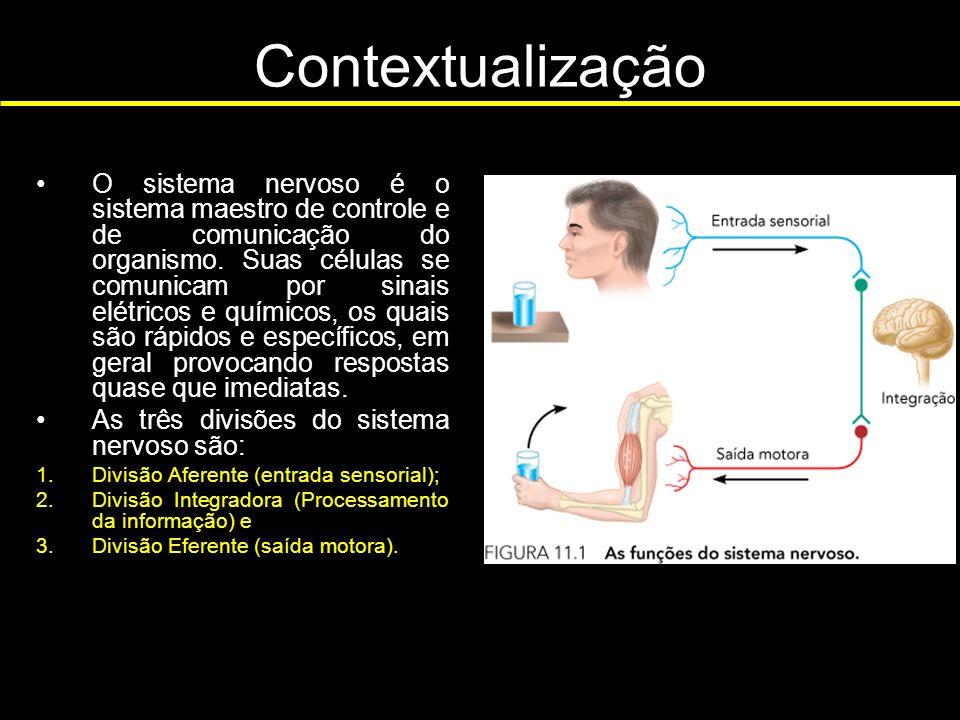 Contextualização O sistema nervoso é o sistema maestro de controle e de comunicação do organismo. Suas células se comunicam por sinais elétricos e quí