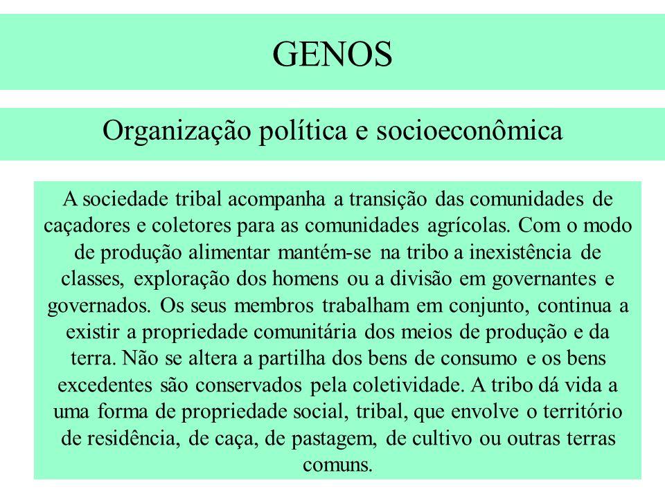 GENOS Organização política e socioeconômica A sociedade tribal acompanha a transição das comunidades de caçadores e coletores para as comunidades agrí