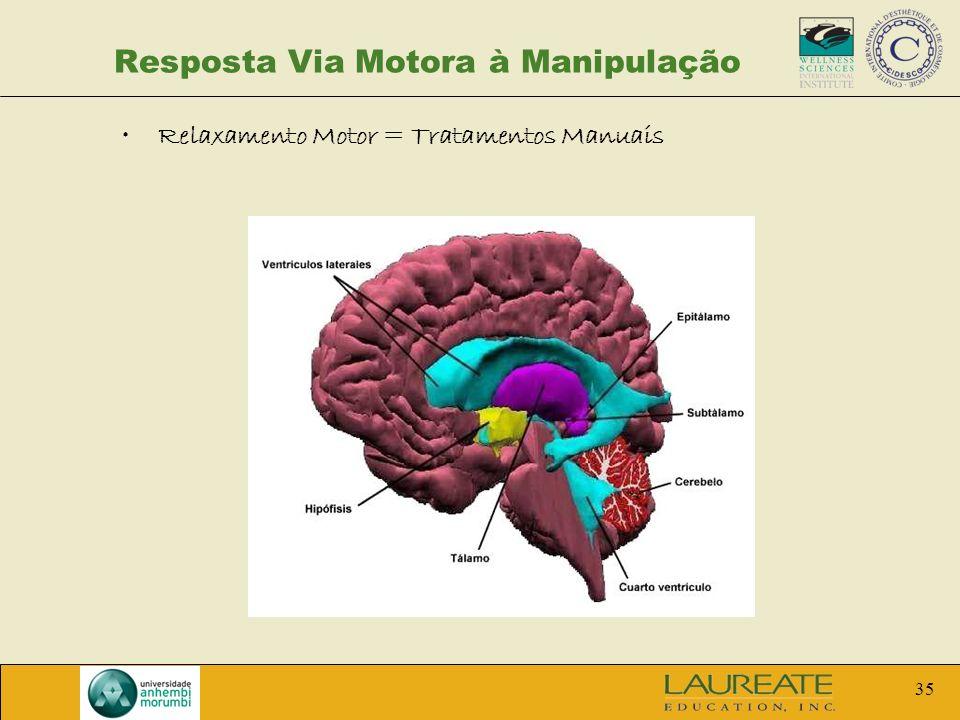 35 Resposta Via Motora à Manipulação Relaxamento Motor = Tratamentos Manuais