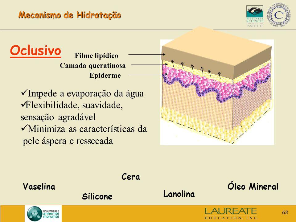 68 Mecanismo de Hidratação Filme lipídico Camada queratinosa Epiderme Oclusivo Impede a evaporação da água Flexibilidade, suavidade, sensação agradáve