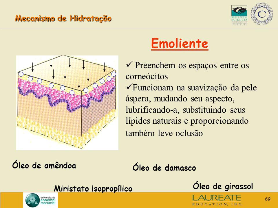 69 Mecanismo de Hidratação Emoliente Preenchem os espaços entre os corneócitos Funcionam na suavização da pele áspera, mudando seu aspecto, lubrifican