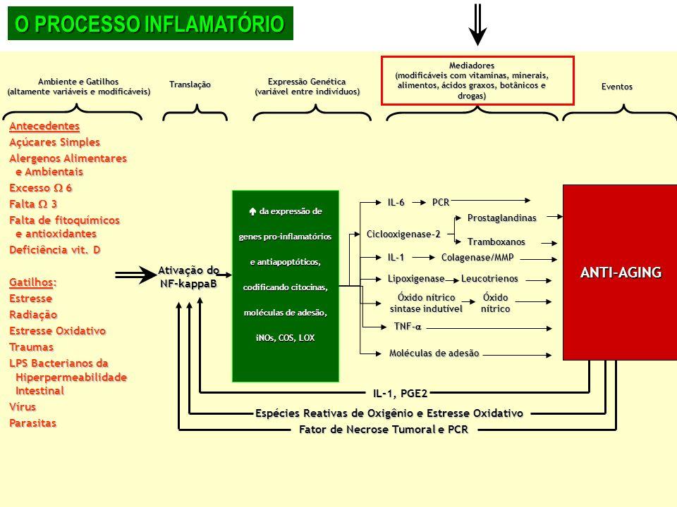 Ambiente e Gatilhos (altamente variáveis e modificáveis) Translação Expressão Genética (variável entre indivíduos) Mediadores (modificáveis com vitami