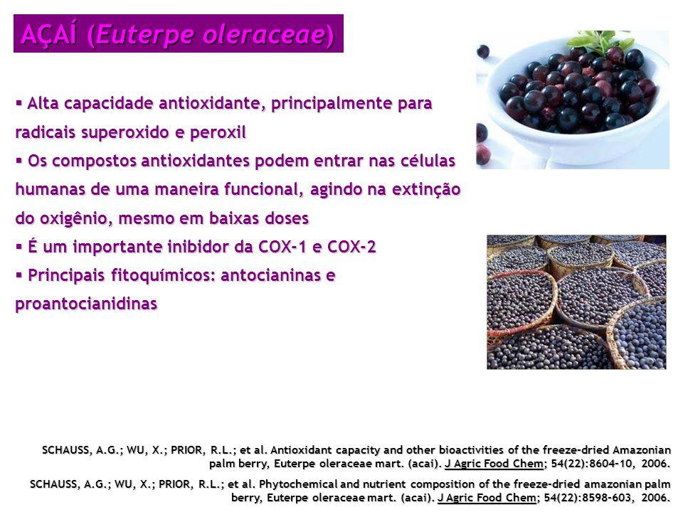 AÇAÍ (Euterpe oleraceae) Alta capacidade antioxidante, principalmente para radicais superoxido e peroxil Alta capacidade antioxidante, principalmente
