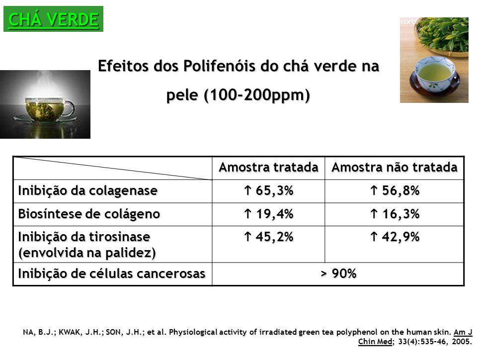CHÁ VERDE Efeitos dos Polifenóis do chá verde na pele (100-200ppm) Amostra tratada Amostra não tratada Inibição da colagenase 65,3% 65,3% 56,8% 56,8% Biosíntese de colágeno 19,4% 19,4% 16,3% 16,3% Inibição da tirosinase (envolvida na palidez) 45,2% 45,2% 42,9% 42,9% Inibição de células cancerosas > 90% NA, B.J.; KWAK, J.H.; SON, J.H.; et al.
