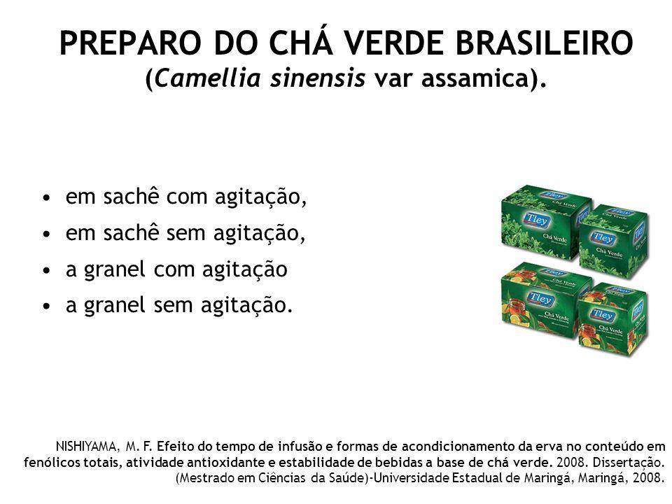 PREPARO DO CHÁ VERDE BRASILEIRO (Camellia sinensis var assamica). em sachê com agitação, em sachê sem agitação, a granel com agitação a granel sem agi