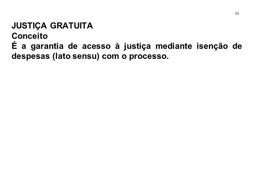 JUSTIÇA GRATUITA Conceito É a garantia de acesso à justiça mediante isenção de despesas (lato sensu) com o processo. 65
