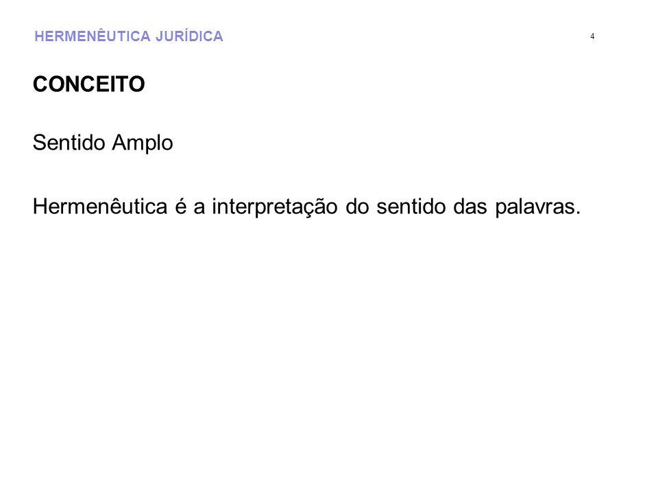HERMENÊUTICA JURÍDICA CONCEITO Sentido Amplo Hermenêutica é a interpretação do sentido das palavras. 4