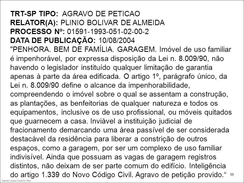 TRT-SP TIPO: AGRAVO DE PETICAO RELATOR(A): PLINIO BOLIVAR DE ALMEIDA PROCESSO Nº: 01591-1993-051-02-00-2 DATA DE PUBLICAÇÃO: 10/08/2004