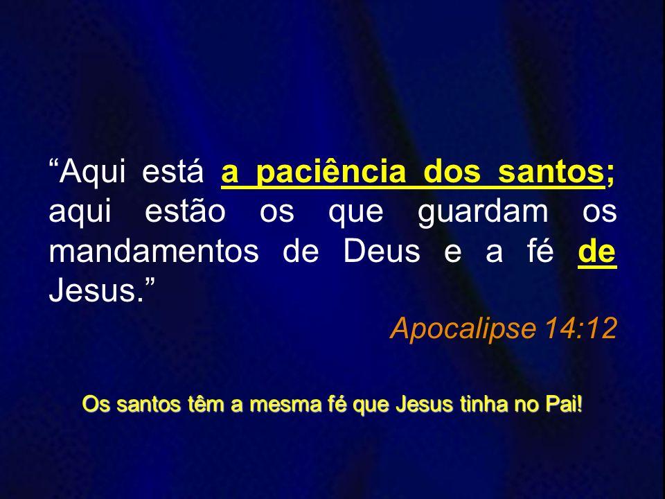 Aqui está a paciência dos santos; aqui estão os que guardam os mandamentos de Deus e a fé de Jesus. Apocalipse 14:12 Os santos têm a mesma fé que Jesu