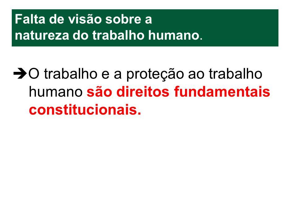 O trabalho e a proteção ao trabalho humano são direitos fundamentais constitucionais. Falta de visão sobre a natureza do trabalho humano.
