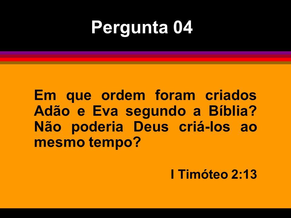 Em que ordem foram criados Adão e Eva segundo a Bíblia? Não poderia Deus criá-los ao mesmo tempo? I Timóteo 2:13 Pergunta 04