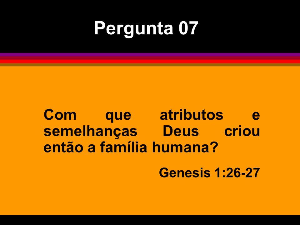 Com que atributos e semelhanças Deus criou então a família humana? Genesis 1:26-27 Pergunta 07