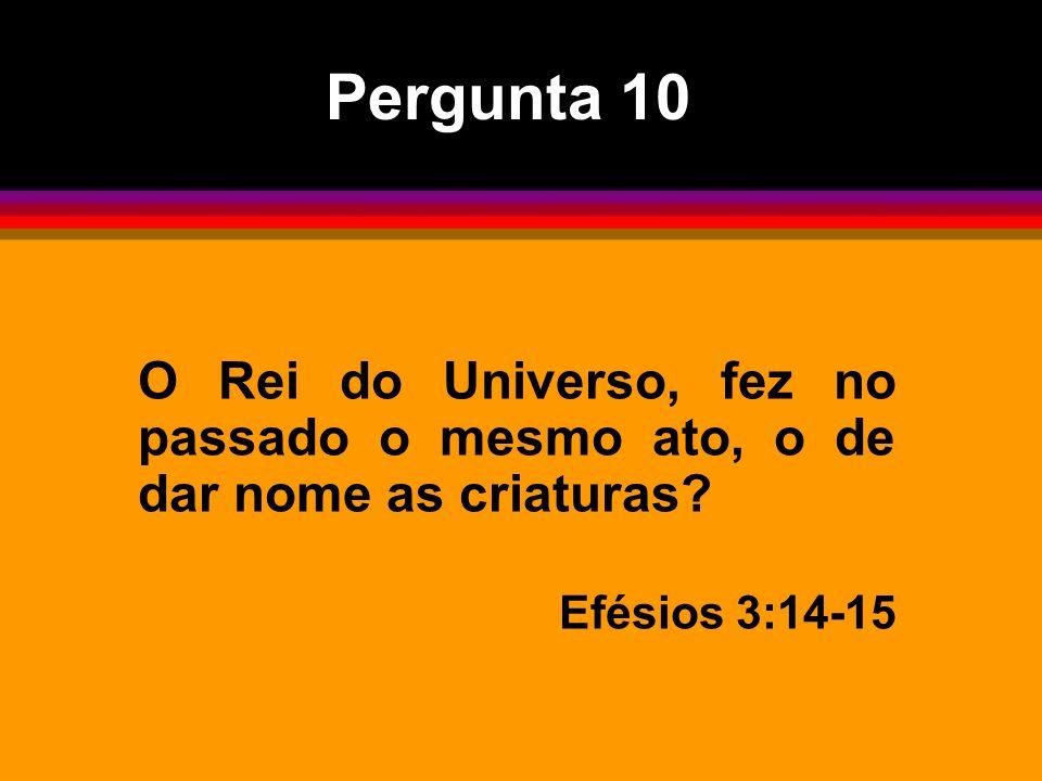 O Rei do Universo, fez no passado o mesmo ato, o de dar nome as criaturas? Efésios 3:14-15 Pergunta 10