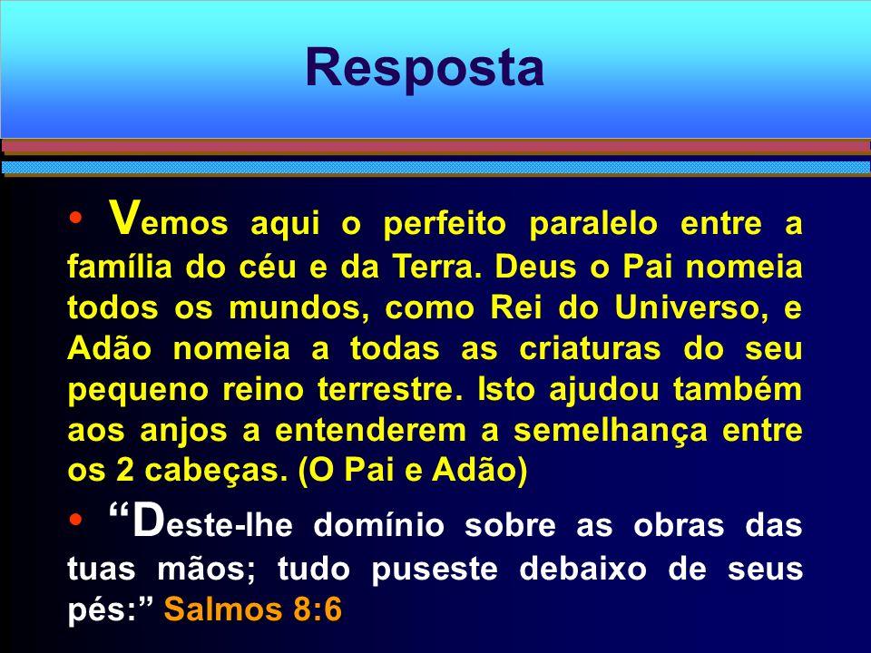 V emos aqui o perfeito paralelo entre a família do céu e da Terra. Deus o Pai nomeia todos os mundos, como Rei do Universo, e Adão nomeia a todas as c