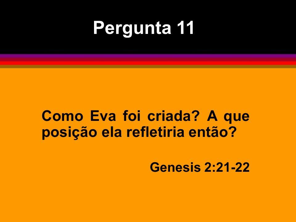 Pergunta 11 Como Eva foi criada? A que posição ela refletiria então? Genesis 2:21-22