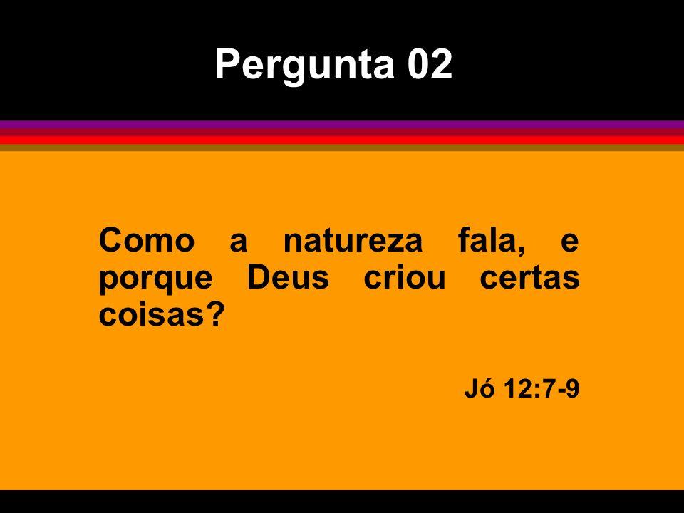 Como a natureza fala, e porque Deus criou certas coisas? Jó 12:7-9 Pergunta 02