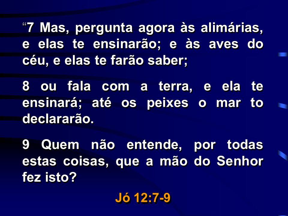 7 Mas, pergunta agora às alimárias, e elas te ensinarão; e às aves do céu, e elas te farão saber; 8 ou fala com a terra, e ela te ensinará; até os pei