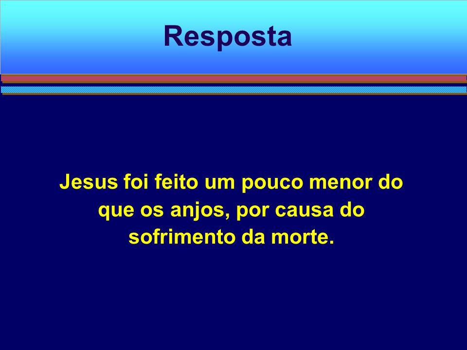 Jesus foi feito um pouco menor do que os anjos, por causa do sofrimento da morte. Resposta