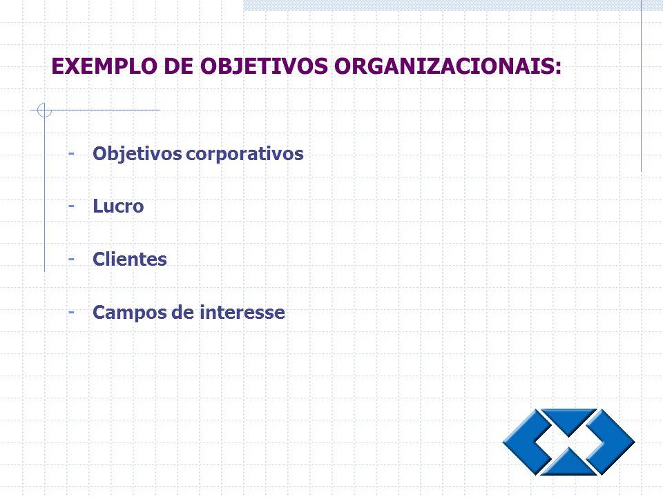 EXEMPLO DE OBJETIVOS ORGANIZACIONAIS: - Objetivos corporativos - Lucro - Clientes - Campos de interesse