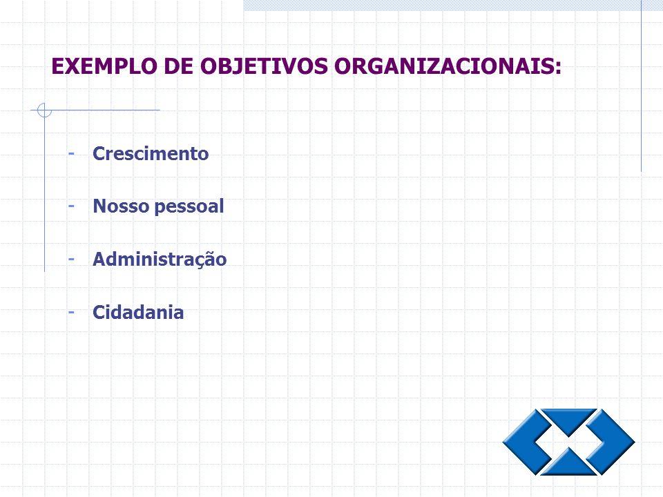 - Crescimento - Nosso pessoal - Administração - Cidadania EXEMPLO DE OBJETIVOS ORGANIZACIONAIS: