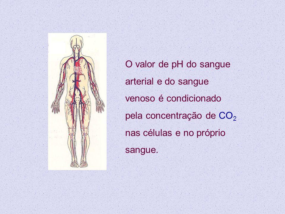 O valor de pH do sangue arterial e do sangue venoso é condicionado pela concentração de CO 2 nas células e no próprio sangue.