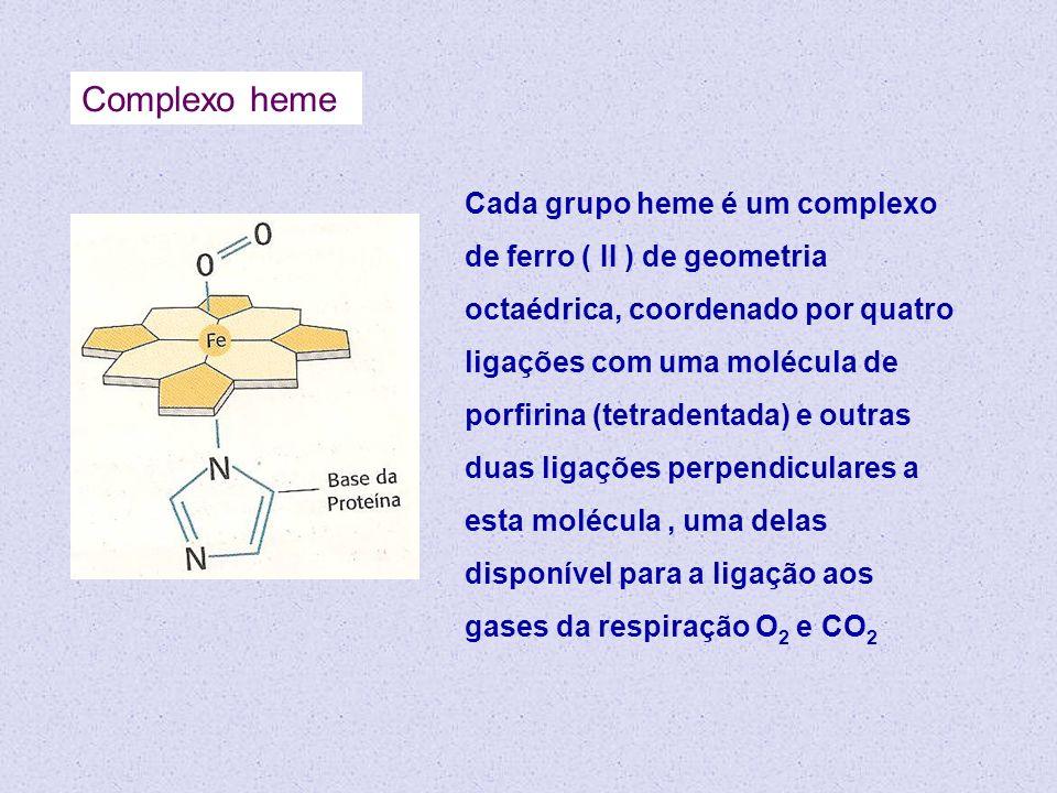 Cada grupo heme é um complexo de ferro ( II ) de geometria octaédrica, coordenado por quatro ligações com uma molécula de porfirina (tetradentada) e o