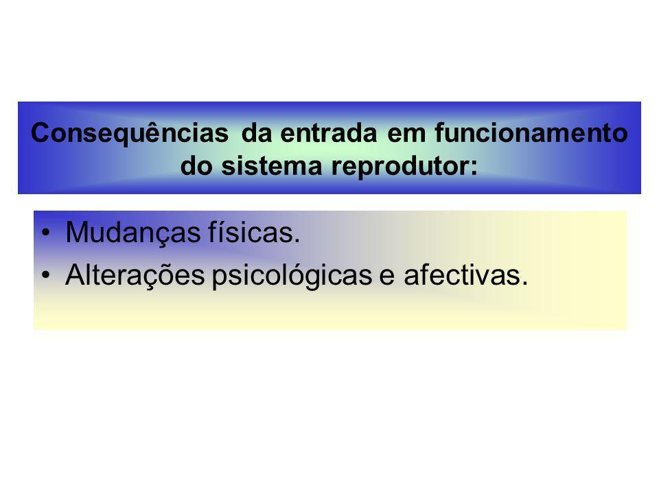 Consequências da entrada em funcionamento do sistema reprodutor: Mudanças físicas. Alterações psicológicas e afectivas.
