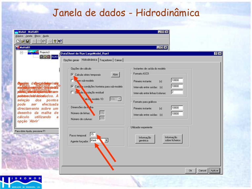 Janela de dados - Hidrodinâmica Opção de imprimir series temporais de elevação e corrente em pontos selecionados. A seleção dos pontos pode ser efectu
