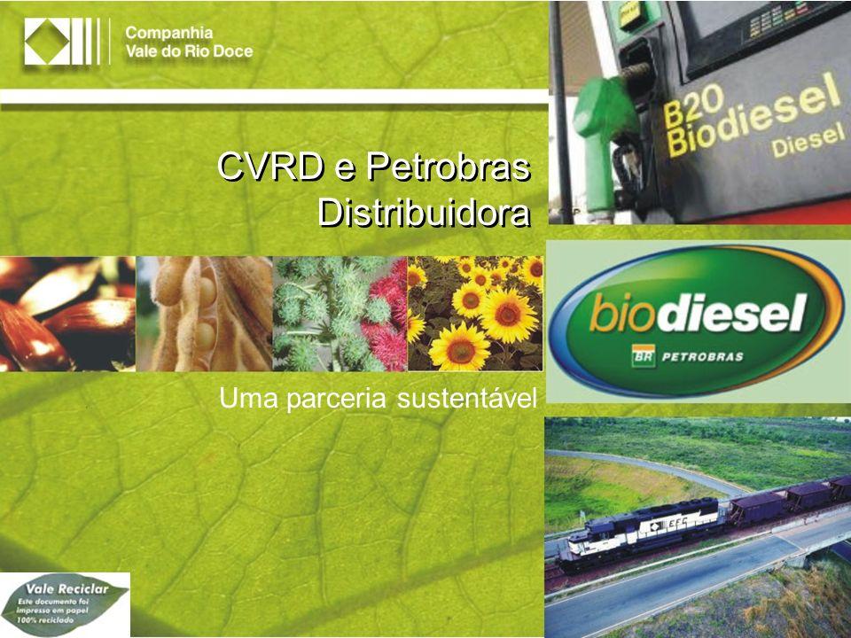Aspectos Ambientais Redução de poluentes: Gases do efeito estufa (aquecimento global) Óxidos de enxofre (chuva ácida) Material particulado (fumaça preta) Incentivo à agricultura familiar nas regiões Norte e Nordeste, através do modelo tributário nacional para a produção do biodiesel Promoção do desenvolvimento das comunidades das regiões produtoras Contribuição ao Programa Nacional de Biodiesel Aspectos Sociais Fonte: DILP (Diretoria de Planejamento e Desenvolvimento Logístico) Biodiesel O Biodiesel possui aspectos atraentes para a CVRD como os ambientais e os sociais.