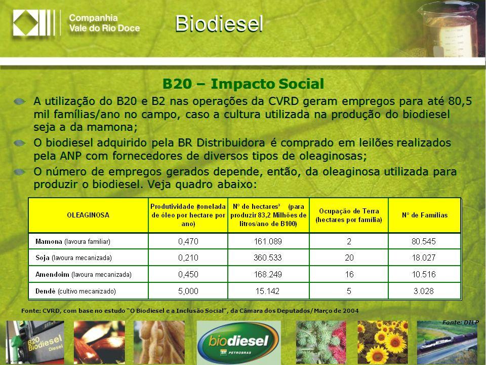 Fonte: DILP Fonte: CVRD, com base no estudo O Biodiesel e a Inclusão Social, da Câmara dos Deputados/Março de 2004 Biodiesel B20 – Impacto Social A ut