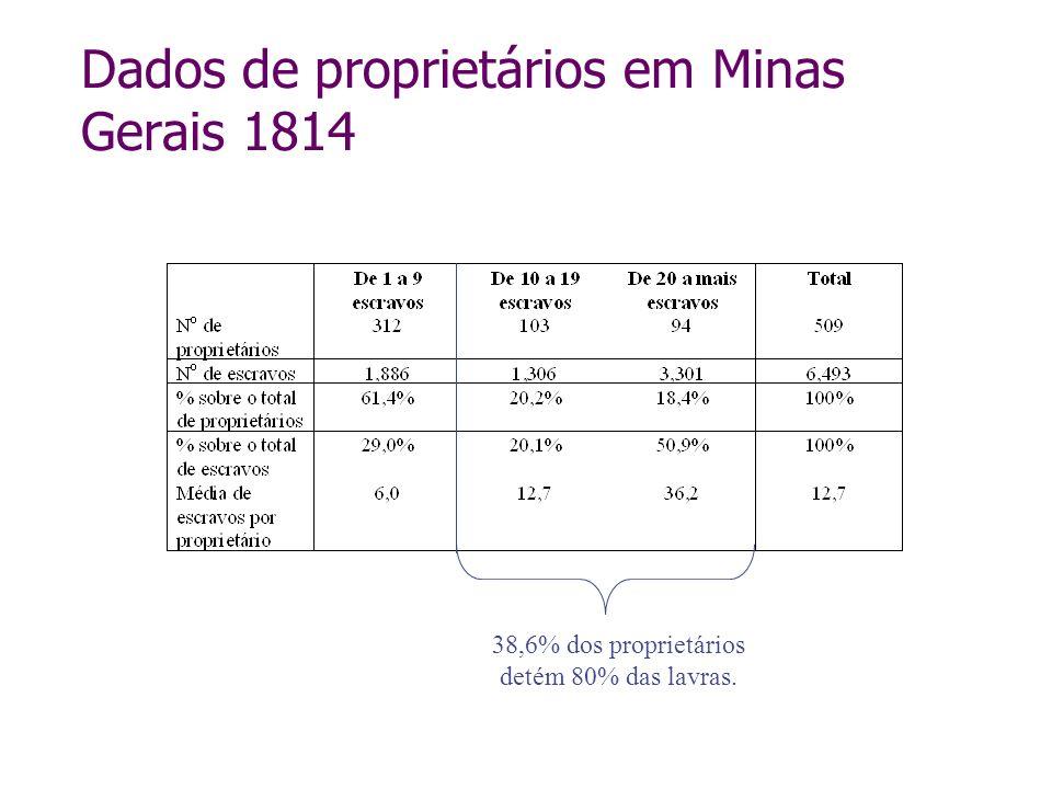 Dados de proprietários em Minas Gerais 1814 38,6% dos proprietários detém 80% das lavras.